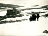 Borskjul ved Ellasjøen. Foto: Norsk Polarinstitutt
