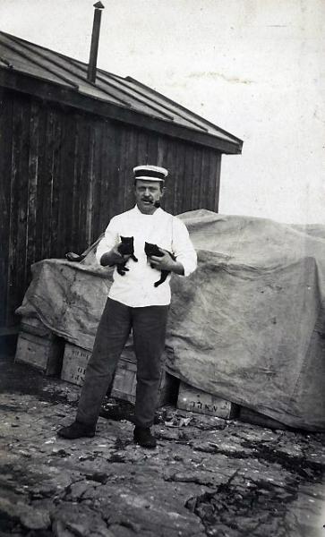 Stuerten. Foto: Norsk Polarinstitutt