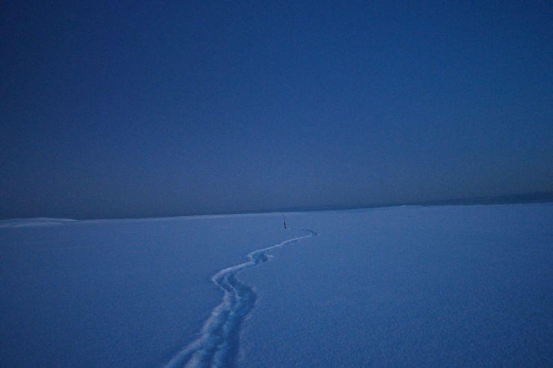 Hullene i isen er gjort klar for storfangst......  Foto: BOF