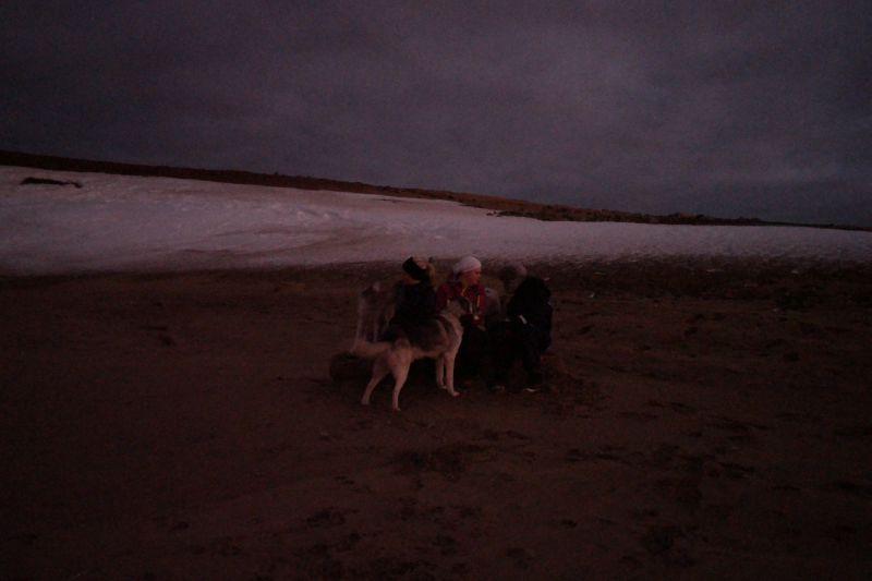 Pikene med hundene på stranden. Foto: BOF
