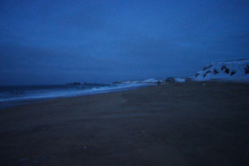 Kobbebukta sett nordøstover. Foto: BOF