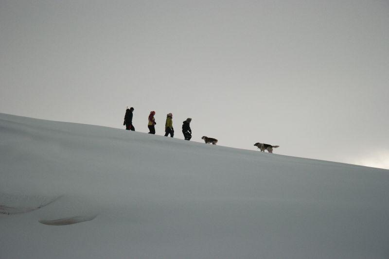 Olsen-banden på tur ned til utløpet av Lakselva på Kvalrossfjæra. Foto: BOF