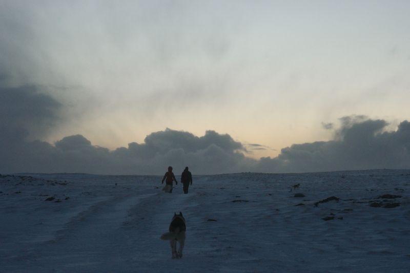 Kari og Oddvar gikk inn i solnedgangen sammen med hundene. Foto: BOF