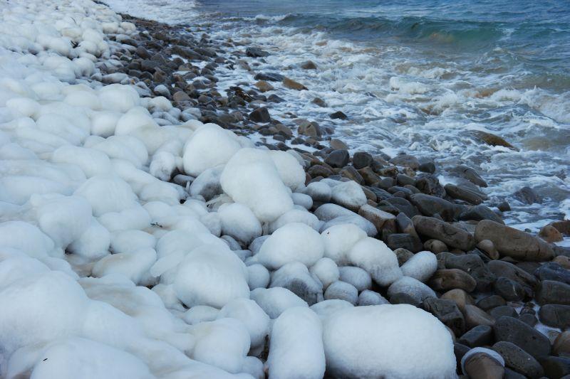 Bjørnøyautstillingen1