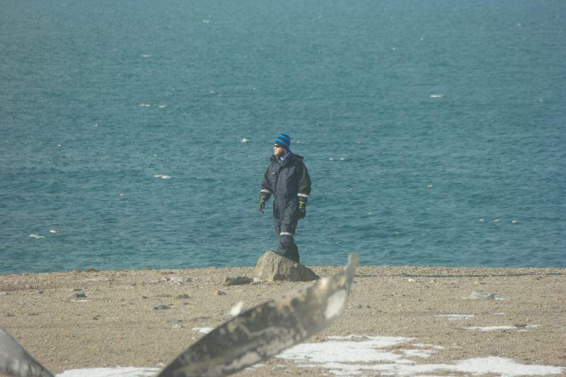 Den sjeldne blåtopptrosten besøkte oss også en dag. Foto: BOF
