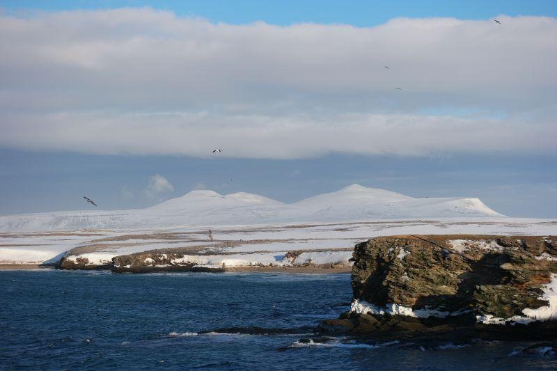 Miseryfjellet med sine tre spisse topper, Skuld, Verdande og Urd. Nordhamna i forgrunnen. Foto: BOF